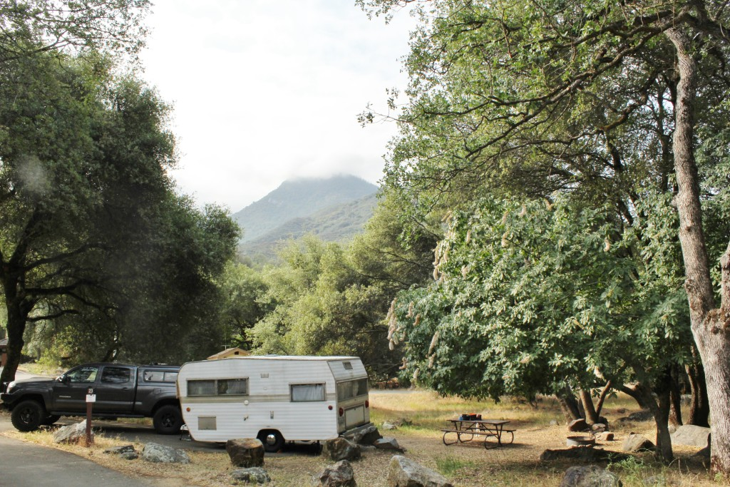 Sequoia National Park Camping
